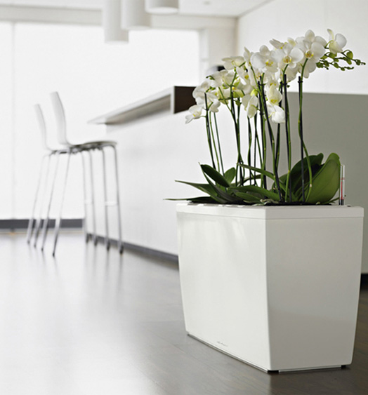 Modern Planters That Match My House And Don T Hurt My Wallet Modular 4