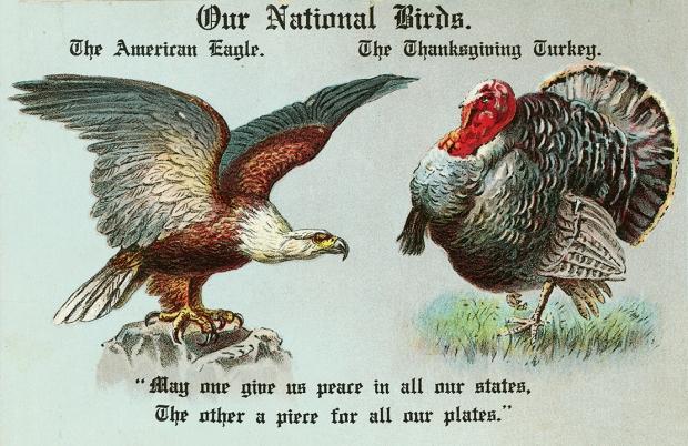 Patriot-Turkey